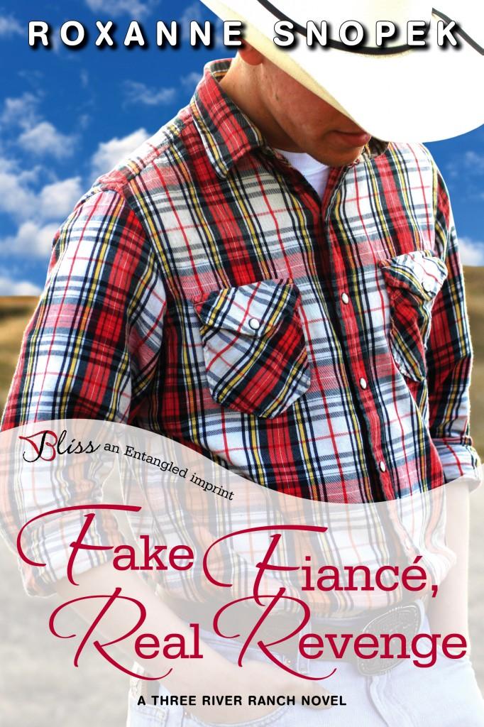 FakeFianceRealRevenge_cover5