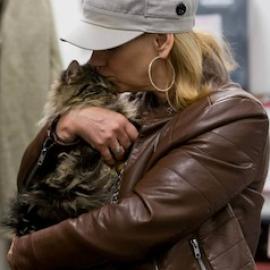 cat_omar_adoption_canada