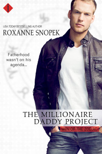 The Millionaire Daddy Project new cover